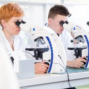 Studenci przy mikroskopach