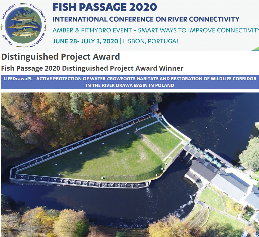 Nagroda Fish Passage 2020